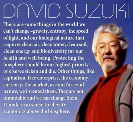 DavidSuzukiquote